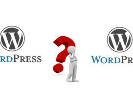 2xwordpress-websitterservice
